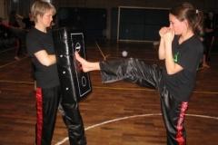 kickboxen_20130622_1124773293