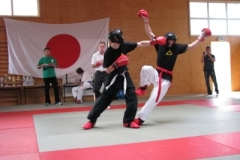 kickboxen_20130622_1192153623