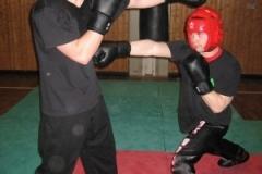 kickboxen_20130622_1307514686