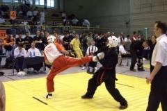 kickboxen_20130622_1370977232