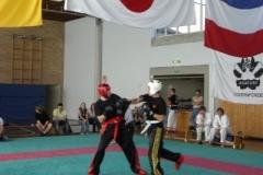 kickboxen_20130622_1592122839