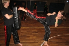 kickboxen_20130622_1822409533